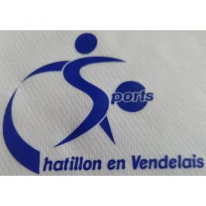CHATILLON EN VENDELAIS
